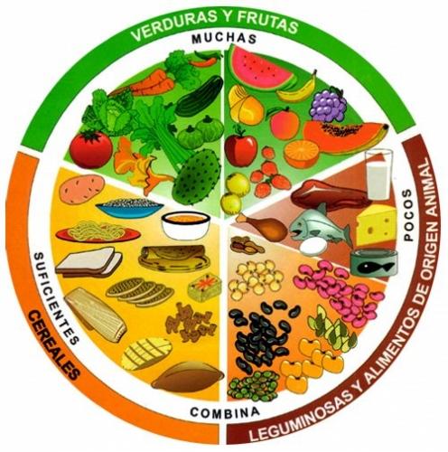 Imagen Plato del Bien Comer - grupos.